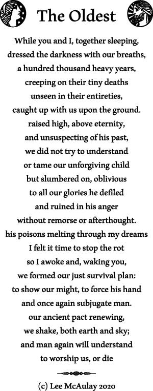 Poem - The Oldest - copyright Lee McAulay 2020