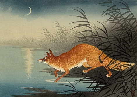 Fox in the reeds, woodblock print by Ohara Koson